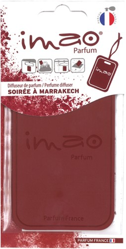 IMAO Soiree a Marrakech