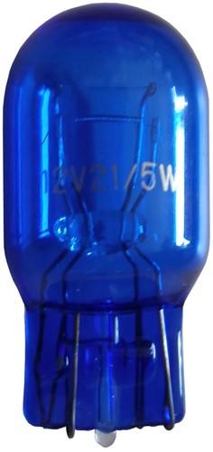 Dagrijverlichting vervangingslamp w21-5w 21watt